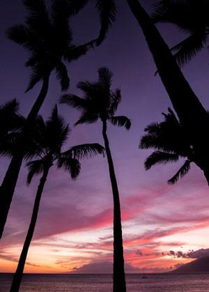 Hawaii VA Loan